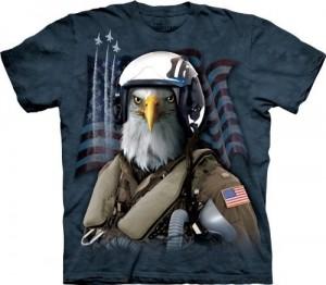 Eagle Jet Fighter